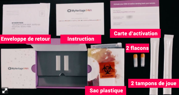 Contenu du kit ADN MyHeritage