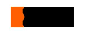 Nickel Logo